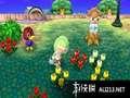 《来吧!动物之森》3DS截图-11
