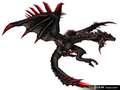 《怪物猎人 边境G》PS3截图-98
