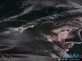 《使命召唤10 幽灵》XBOXONE截图-34