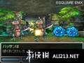 《勇者斗恶龙6 幻之大地》NDS截图-46