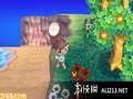 《来吧!动物之森》3DS截图-23