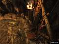 《恶魔城 暗影之王》XBOX360截图-49