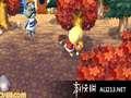 《来吧!动物之森》3DS截图-21