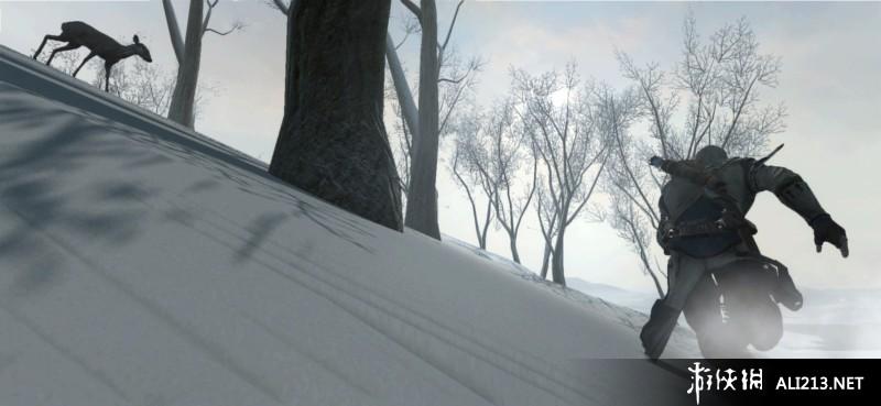 《刺客信条3》XBOX360截图