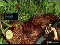 《孤岛惊魂3》PS3截图-65