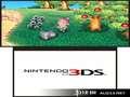 《来吧!动物之森》3DS截图-36