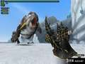 《怪物猎人 边境G》PS3截图-54