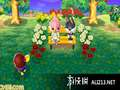 《来吧!动物之森》3DS截图-26