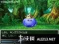 《勇者斗恶龙6 幻之大地》NDS截图-57