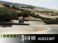 《极限竞速4》XBOX360截图-12