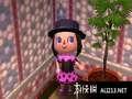 《来吧!动物之森》3DS截图-1