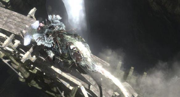 《最后的守护者》游戏截图-3