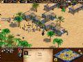 《帝国时代2》游戏截图-4