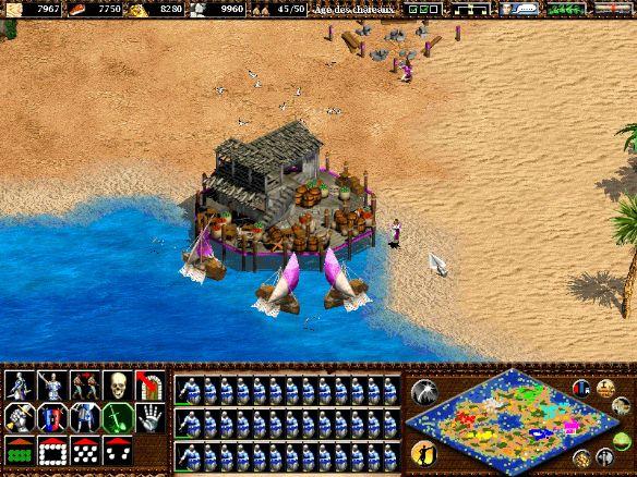 《帝国时代2》游戏截图-2
