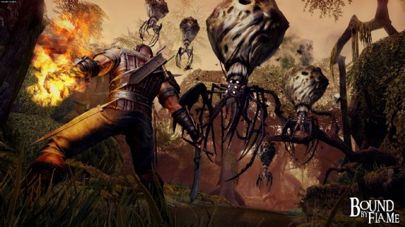 《火焰限界》游戏截图-1
