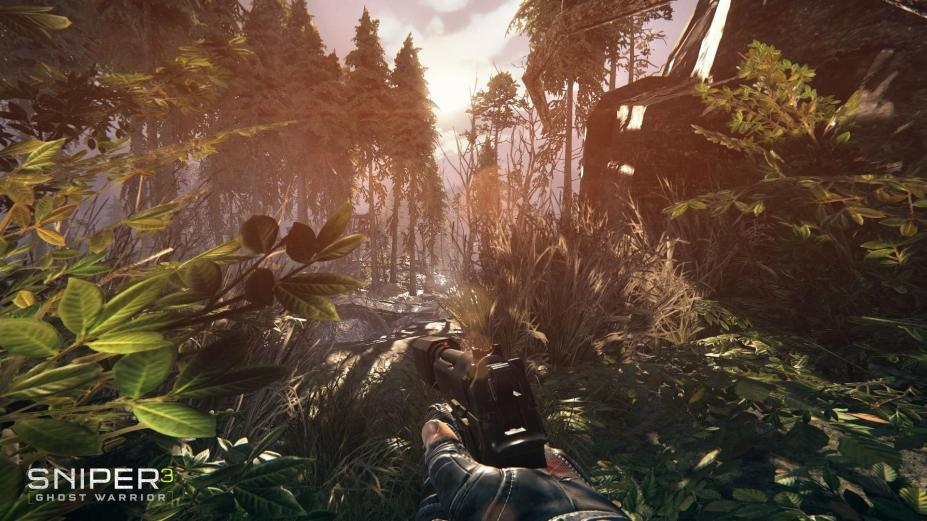 《狙击手:幽灵战士3》游戏截图-1(1)