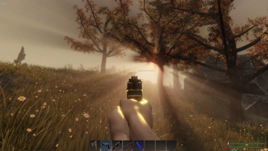 《Subsistence》游戏截图