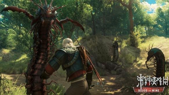 《巫师3:狂猎-血与酒》游戏截图-1