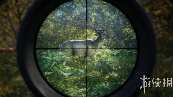 《猎人:野性的呼唤》中文游戏截图