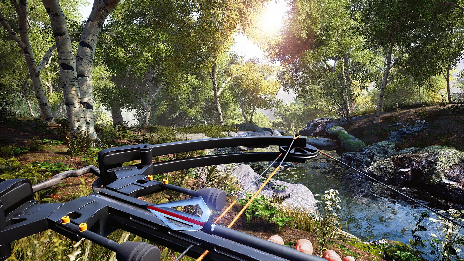 狩猎模拟/Hunting Simulator插图2