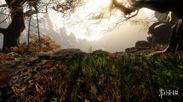 《痛苦之地》游戏截图