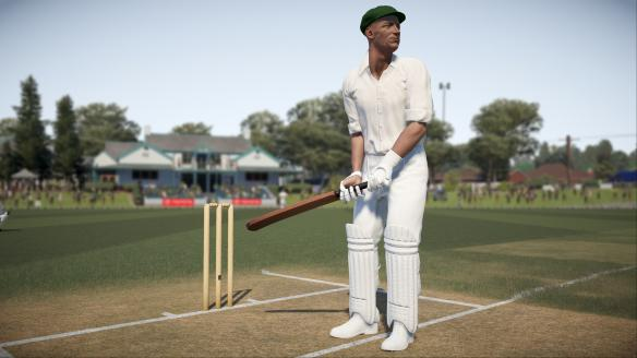 《唐纳德·布莱德曼板球17》游戏截图