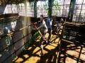 《末日余生:起源》游戏截图-3