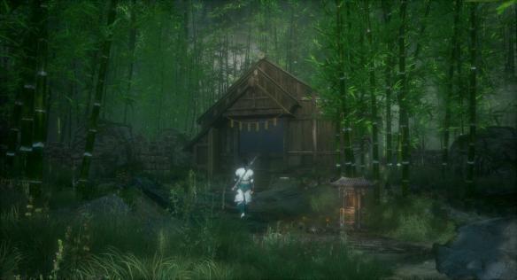 《隐龙传:影踪》游戏截图