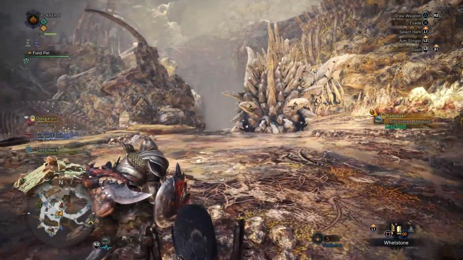 《怪物猎人世界》游戏截图-5(1)