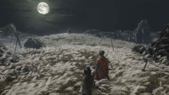 《只狼》游戏截图