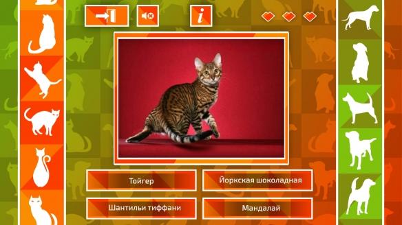 《JQ:猫狗》游戏截图2