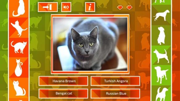《JQ:猫狗》游戏截图5