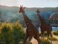 《动物园之星》游戏壁纸-8