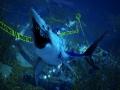 《食人鲨》游戏截图-3-3小图