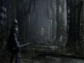 《恶魔之魂:重制版》游戏截图-3小图