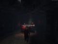 《Valheim》游戏截图-9小图