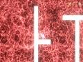 《eia》游戏截图-10小图