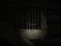 《Concealment》游戏截图-3小图