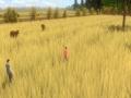 《被遗忘的田野》游戏截图-11小图