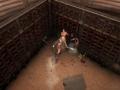 《Gladio and Glory》游戏截图-1小图