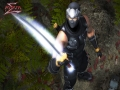 《忍者龙剑传:巨匠合集》游戏截图-2小图