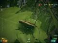 《虫豸天下》游戏截图-9小图