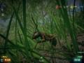 《虫豸天下》游戏截图-3小图