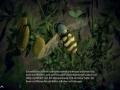 《虫豸天下》游戏截图-2小图