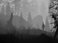 《钢之铸歌》游戏截图-11小图