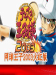 网球王子2003火红版 简体汉化版