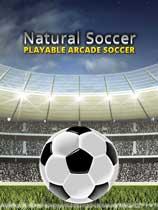 自然足球免安裝綠色版