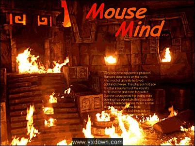 《老鼠闯迷宫》