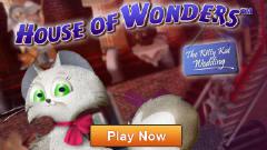 《奇妙屋的猫猫婚礼》硬盘版