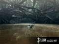 《怪物猎人3》WII截图-117